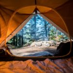 looking-out-a-tent-at-a-campfire-beneath-trees